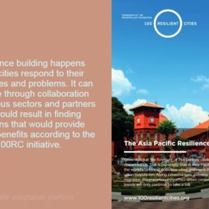 The Asia-Pacific Resilience Prospectus