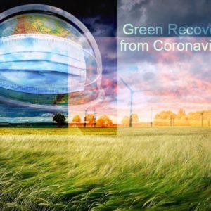 Public Health Organization Urging a Green Recovery from Coronavirus
