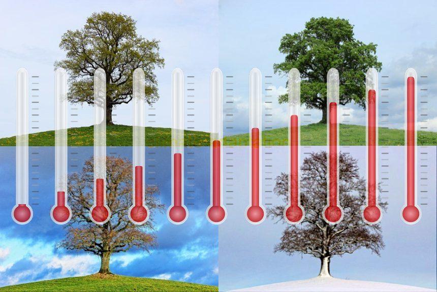 climate change adaptation 2021